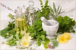 травы - возбудители и масла афродизиаки
