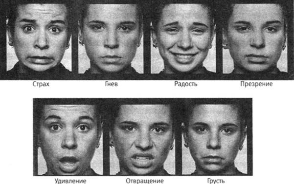 7 базовых эмоций человека