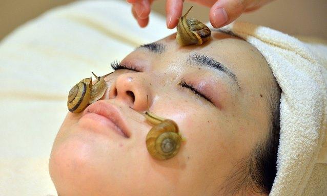 необычные спа-процедуры массаж улитками