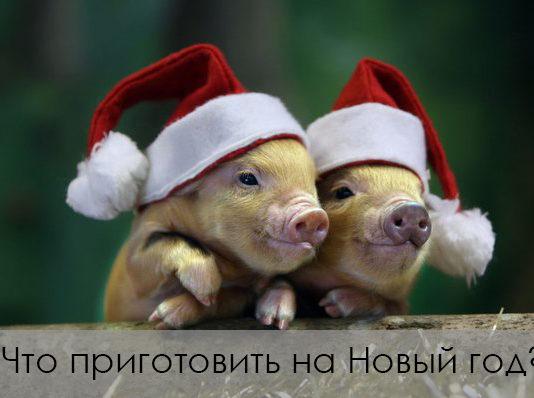 Новый Год свиньи 2019